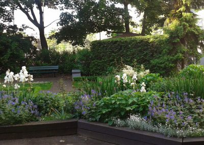 professionelle Gartenpflege: Rasenflächen, Staudenrabatten und Rosenbeete, Formhecken und frei wachsende Gehölze, Dachgarten