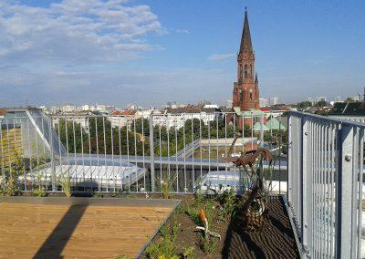 Neubau einer Dachterrasse mit Holzbeplankung und angrenzenden Pflanzflächen