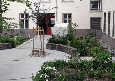 professionelle Gartenpflege: neu gestalteter Hinterhof mit Staudenflächen und Gehölzen