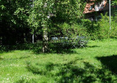 professionelle Gartenpflege: Rasenflächen, Gehölzflächen, Staudenflächen, befestigte Flächen