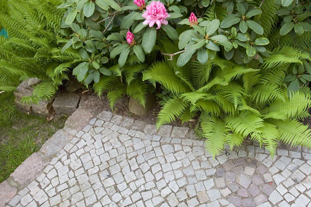 Natursteinpflaster mit Motiv
