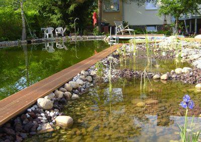 Neuanlage eines großen Schwimmteiches